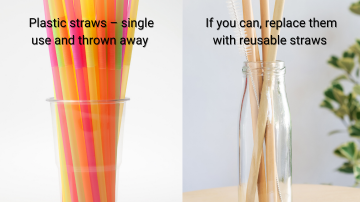 Skip the Straw Day